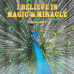 magic&miracle